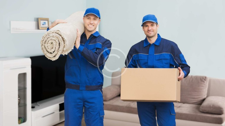 All Types of Services and Supplies